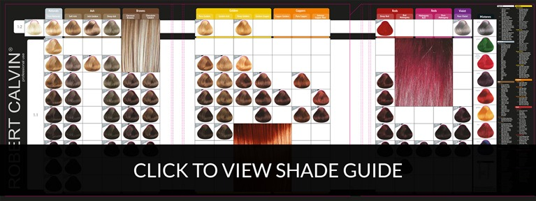 click_to_view_shade_guide